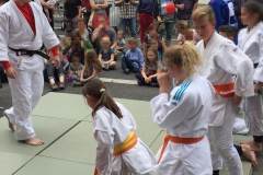 Sommerfest - Judo 2